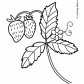 Strawberry nature coloring page