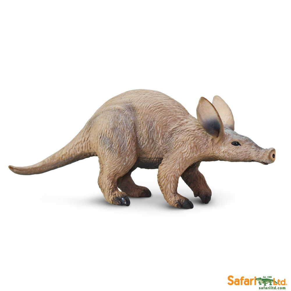 Aardvark Pictures Kids Search