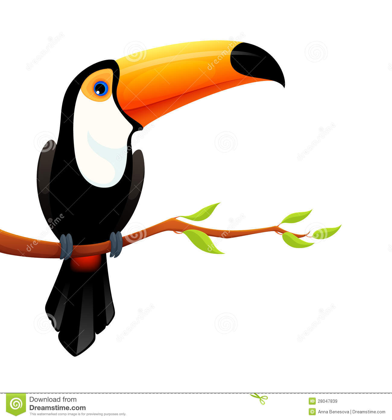 Toucan pictures kids search - Clipart illustration ...